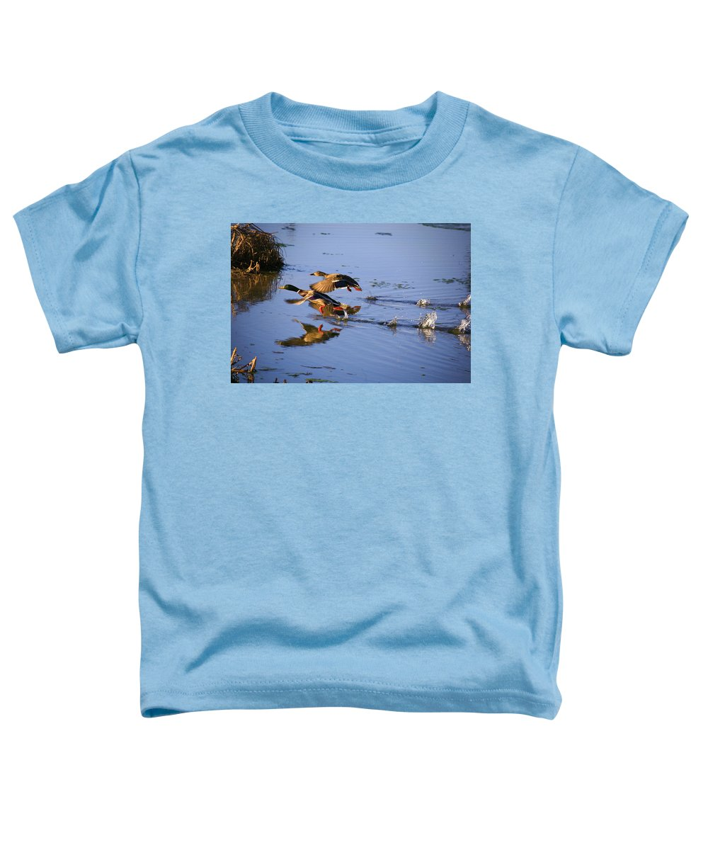 Duck Toddler T-Shirt featuring the photograph Take Off by Robert Pearson