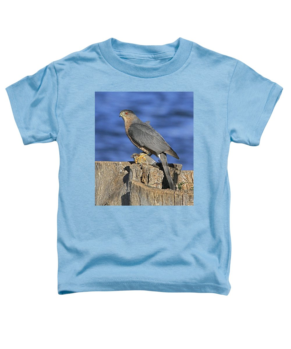 Cooper Toddler T-Shirt featuring the photograph The Catch by Robert Pearson