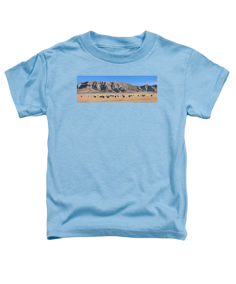 Panorama Toddler T-Shirt featuring the photograph Chalk Cliffs Panorama by Todd Klassy