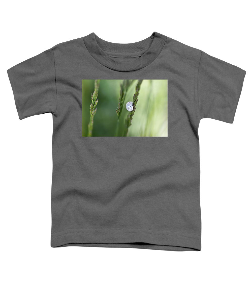 Snail Toddler T-Shirt featuring the photograph Snail On Grass by Nailia Schwarz
