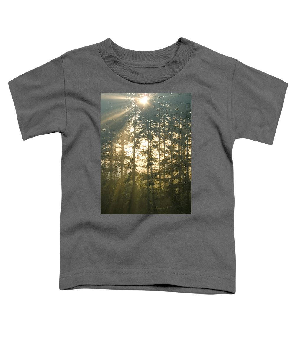 Nature Toddler T-Shirt featuring the photograph Light In The Forest by Daniel Csoka