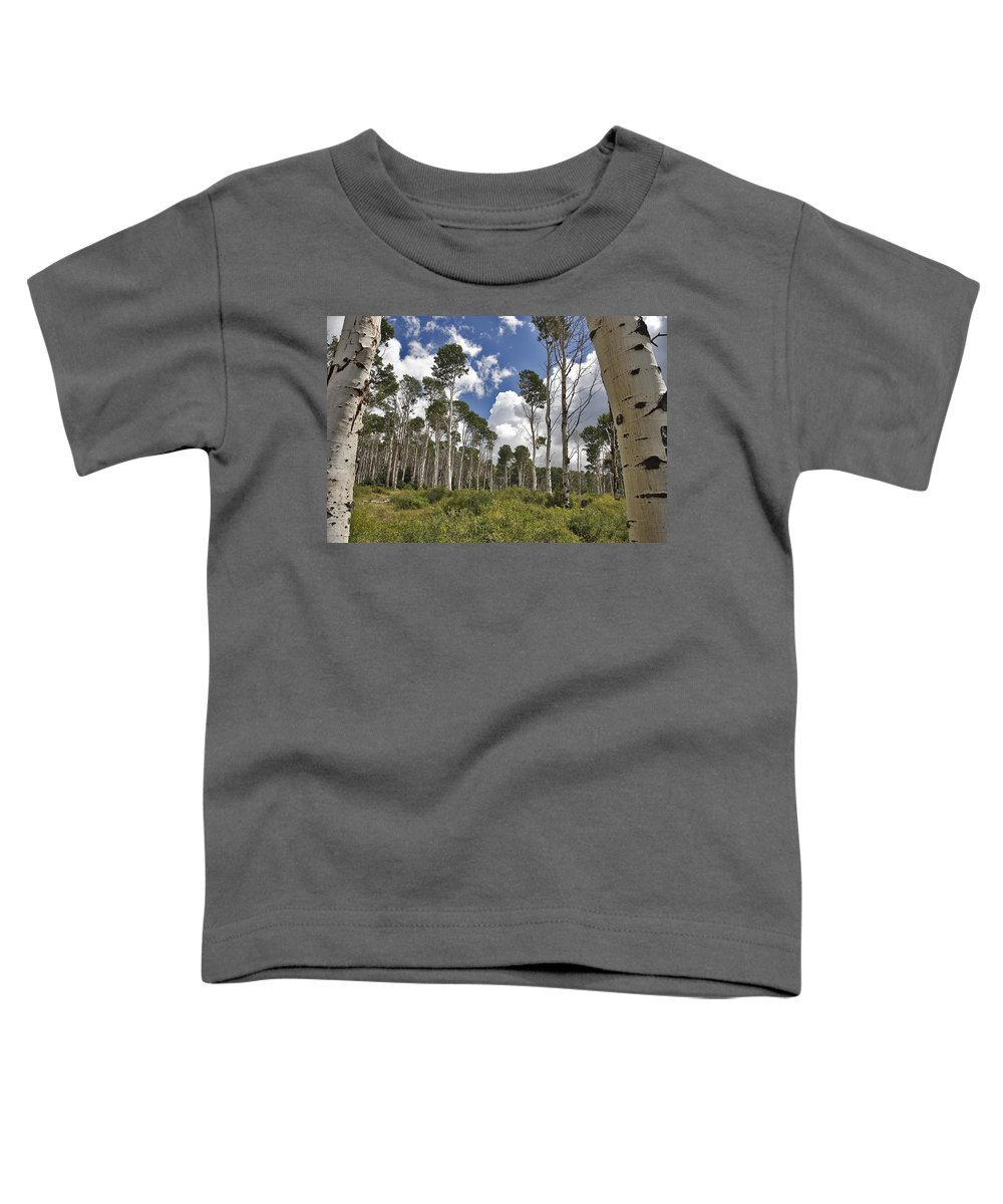 3scape Toddler T-Shirt featuring the photograph Aspen Grove by Adam Romanowicz