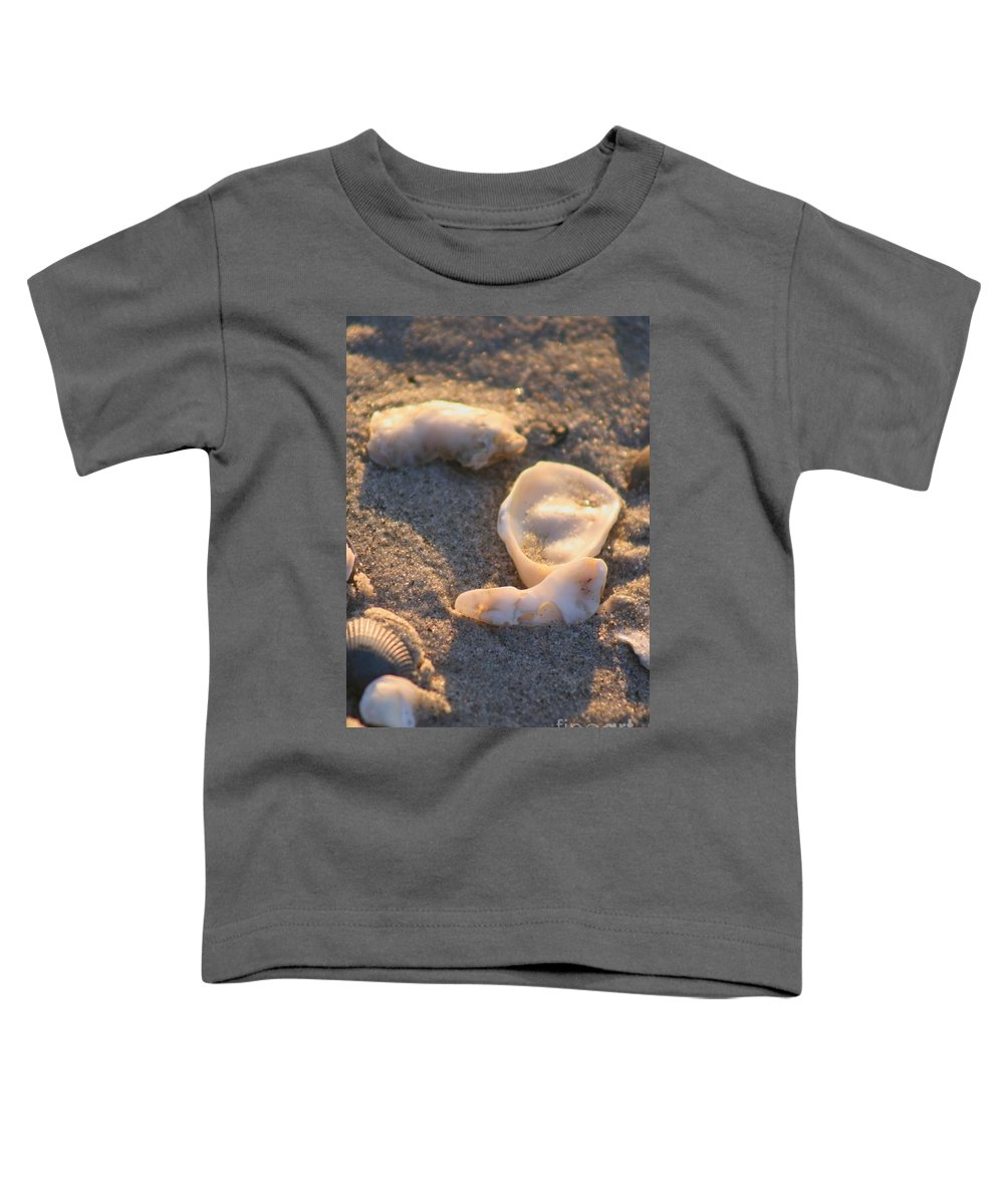 Shells Toddler T-Shirt featuring the photograph Bald Head Island Shells by Nadine Rippelmeyer