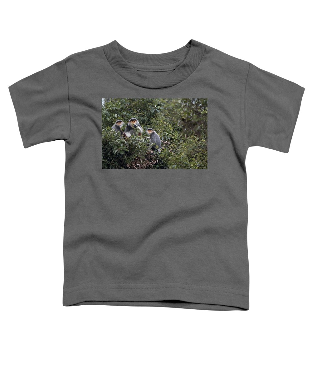 Cyril Ruoso Toddler T-Shirt featuring the photograph Douc Langur Male And Females Vietnam by Cyril Ruoso