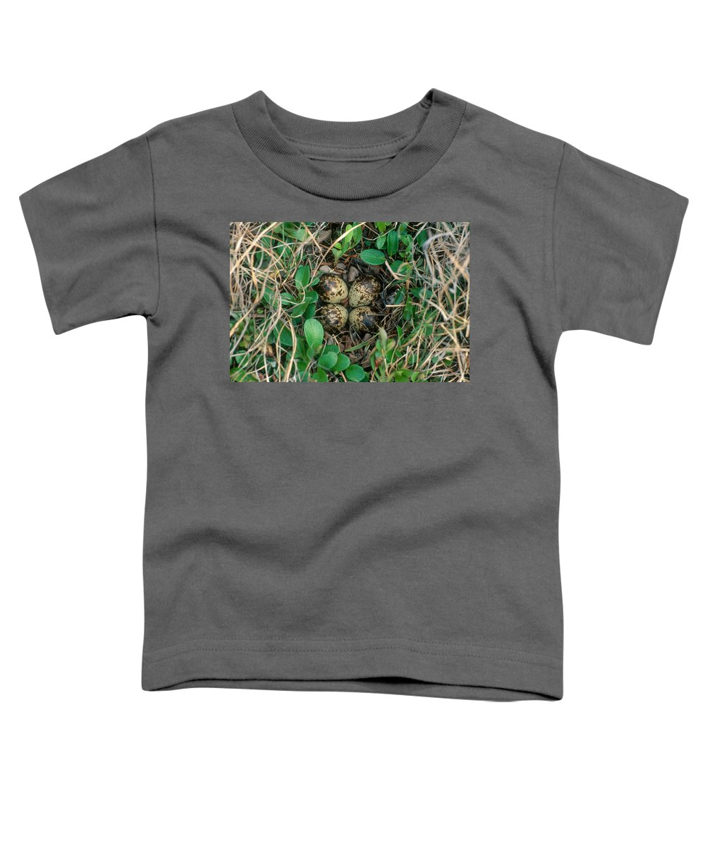 Dunlin Toddler T-Shirts
