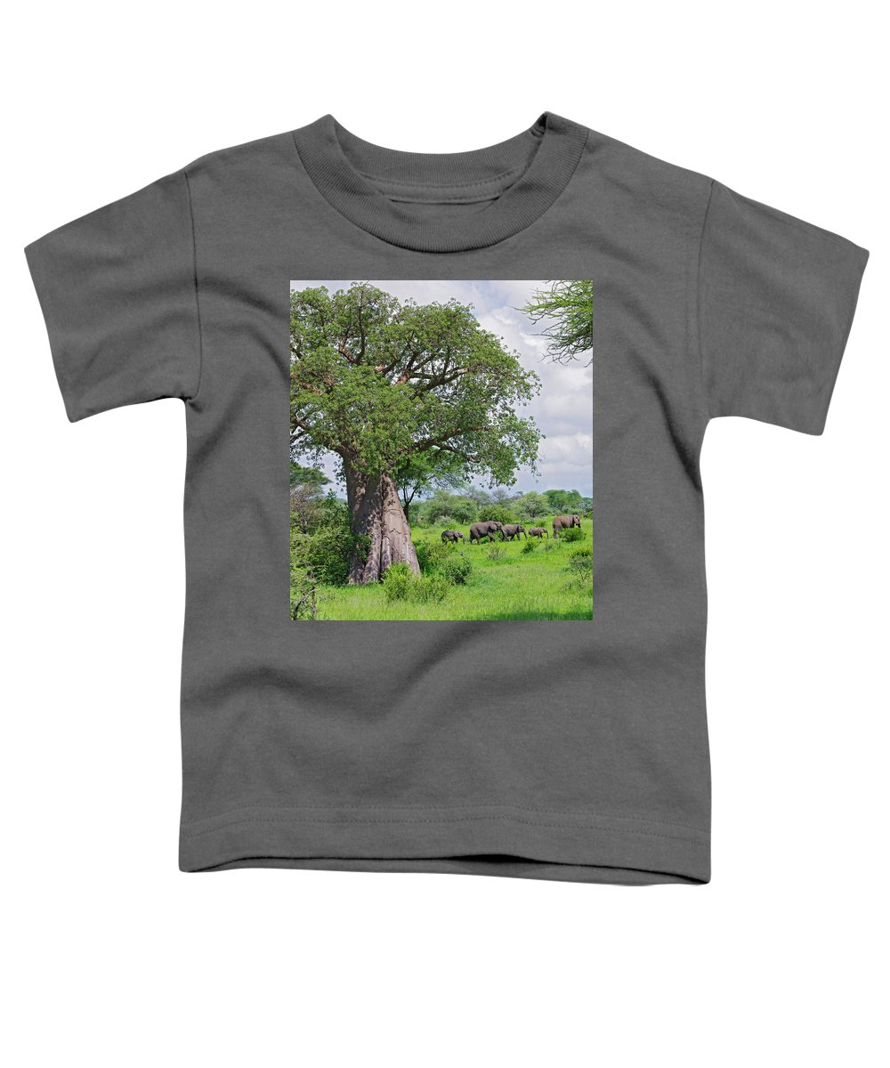 African Elephant Toddler T-Shirt featuring the photograph Elephants Walking Past Large Baobob by Johnathan Ampersand Esper