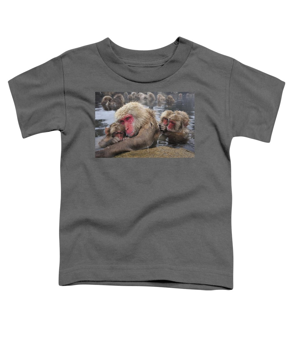 Thomas Marent Toddler T-Shirt featuring the photograph Japanese Macaque Grooming Mother by Thomas Marent
