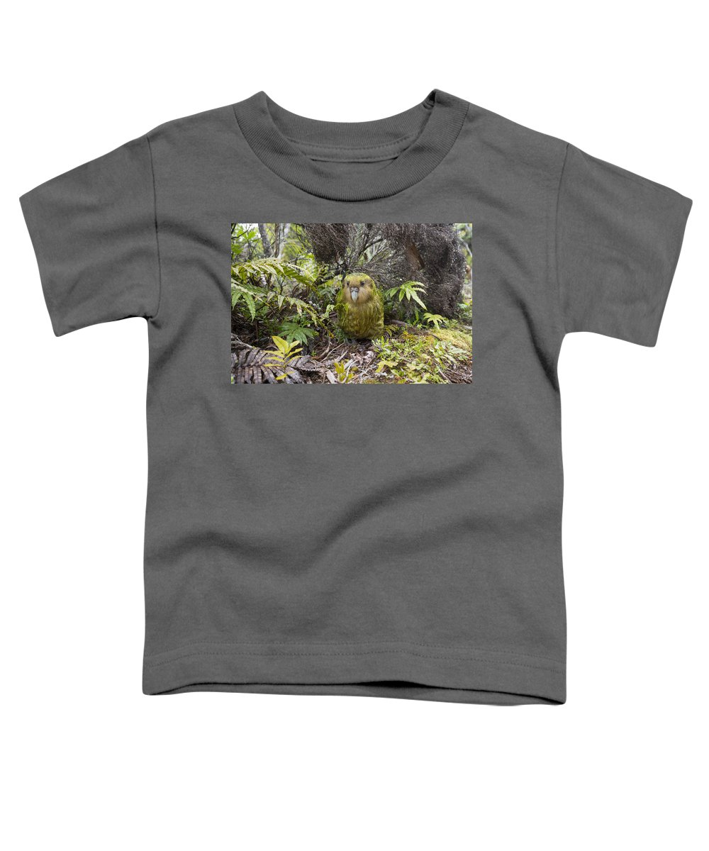 Tui De Roy Toddler T-Shirt featuring the photograph Kakapo Male In Forest Codfish Island by Tui De Roy