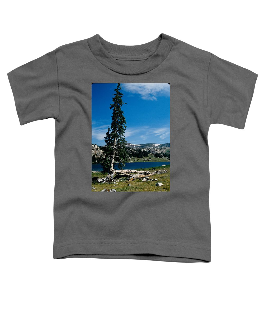 Mountains Toddler T-Shirt featuring the photograph Lone Tree At Pass by Kathy McClure