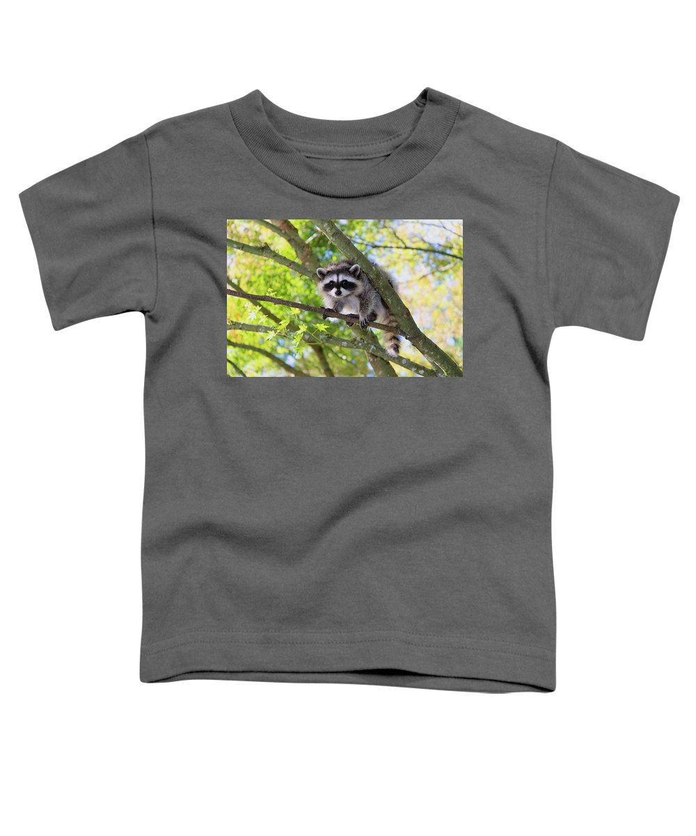 Mammals Toddler T-Shirt featuring the photograph Out On A Limb by Kym Backland