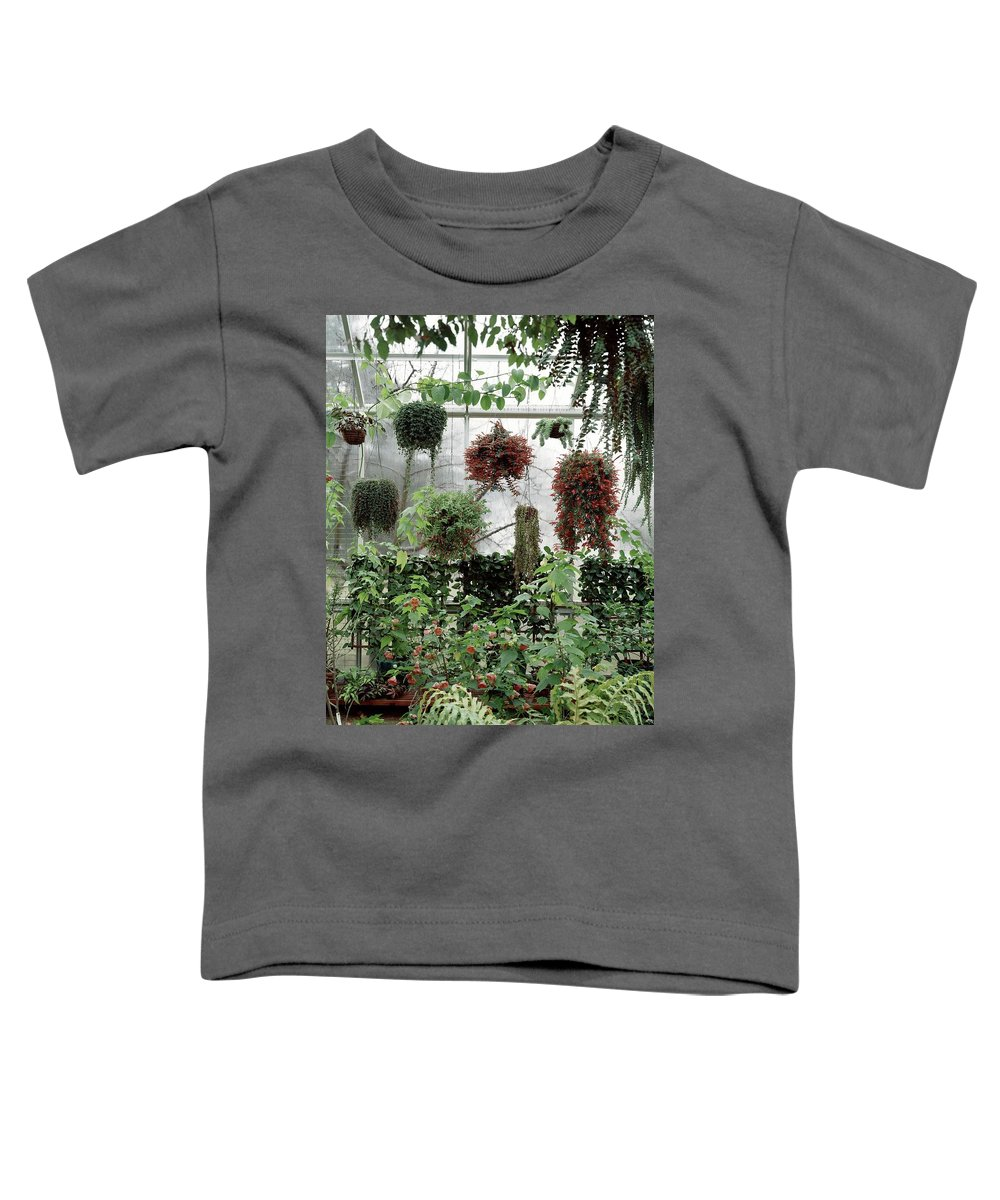 Indoors Toddler T-Shirt featuring the photograph Plants Hanging In A Greenhouse by Wiliam Grigsby