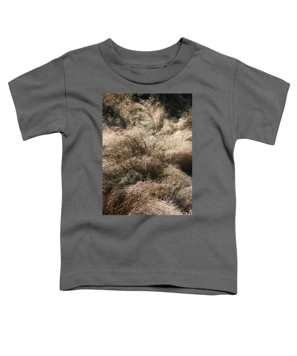 Grasses Toddler T-Shirt featuring the photograph Sparkling Grasses by Nadine Rippelmeyer