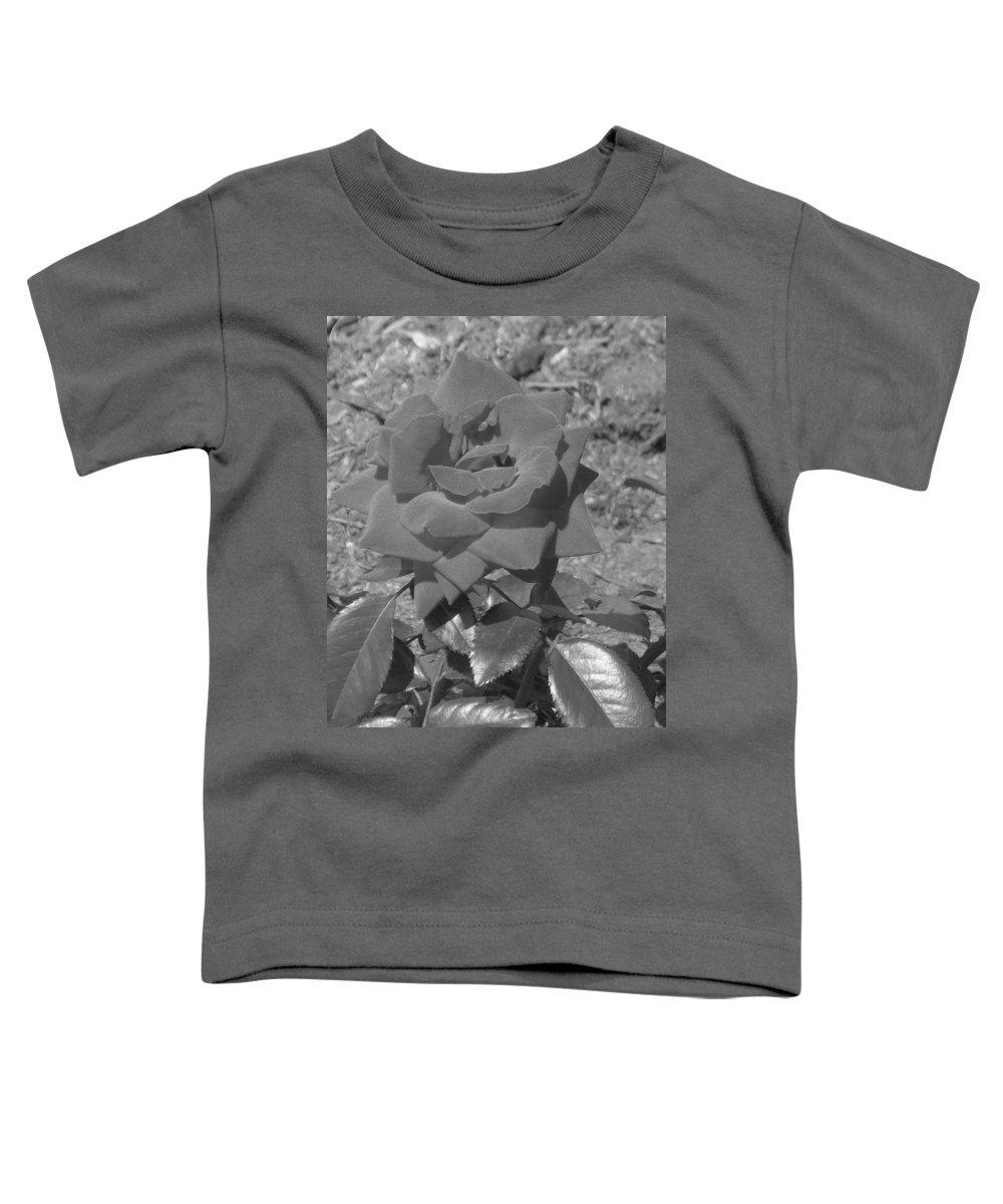 Rose Toddler T-Shirt featuring the photograph Velvet Rose by Pharris Art