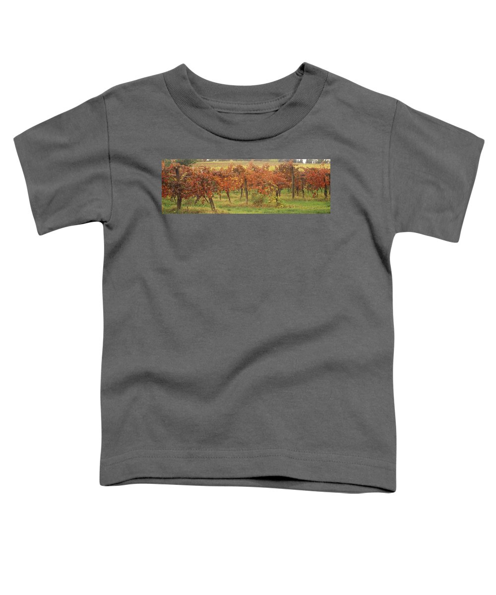 Emilia Romagna Toddler T-Shirts