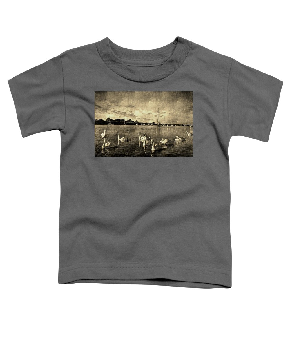 Swans Toddler T-Shirt featuring the photograph Vintage Swans by David Pyatt