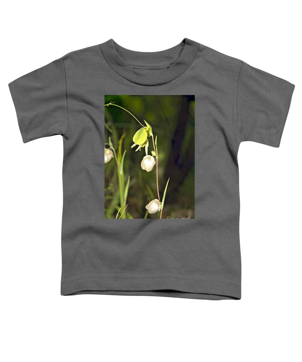 Wildflowers; Globes; Nature; Green; White Toddler T-Shirt featuring the photograph Whispers by Kathy McClure