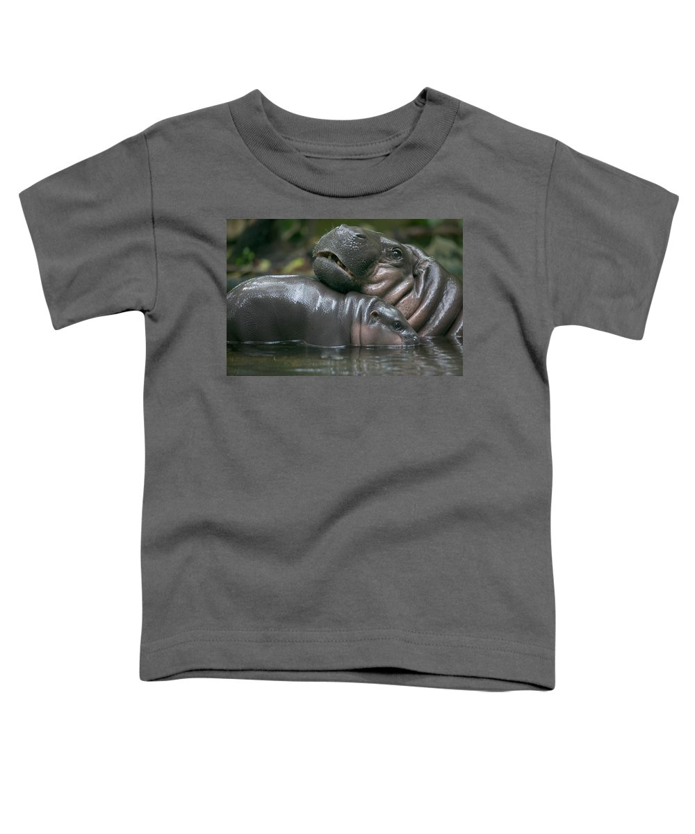 Mp Toddler T-Shirt featuring the photograph Pygmy Hippopotamus Hexaprotodon by Cyril Ruoso