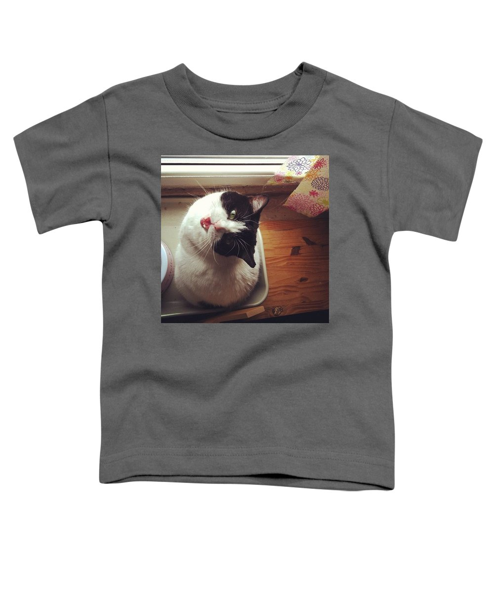 Catsofinstagram Toddler T-Shirt featuring the photograph the Bowl's Empty! #cat by Katie Cupcakes