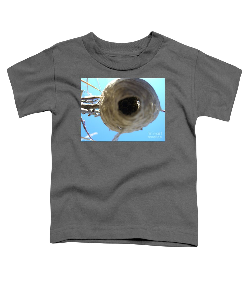Photograph Bee Hive Blue Sky Branch Insect Toddler T-Shirt featuring the photograph Bee Hive by Seon-Jeong Kim