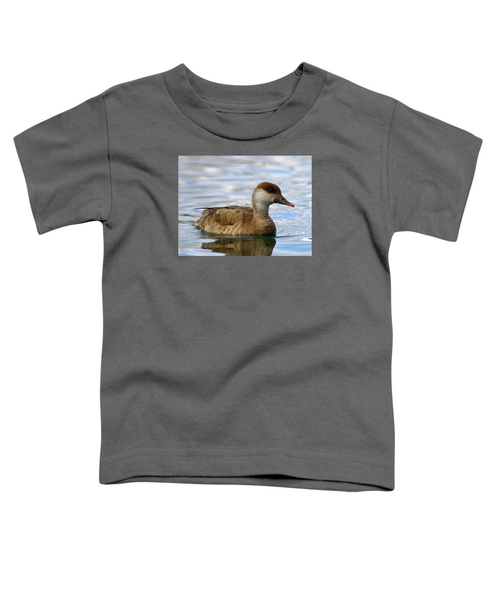 Duck Toddler T-Shirt featuring the photograph Red-crested Female Pochard Duck, Netta Rufina by Elenarts - Elena Duvernay photo