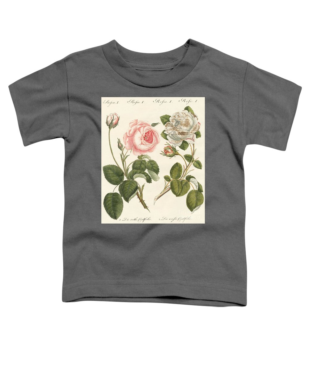 Provence Rose Toddler T-Shirt featuring the drawing Kinds Of Roses by German School