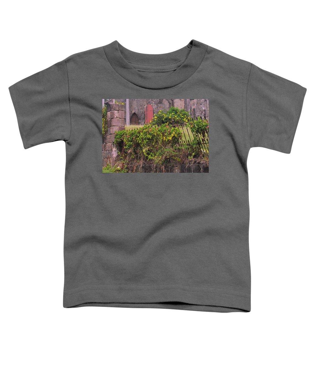 Anglican Toddler T-Shirt featuring the photograph Abandoned Churchyard by Ian MacDonald