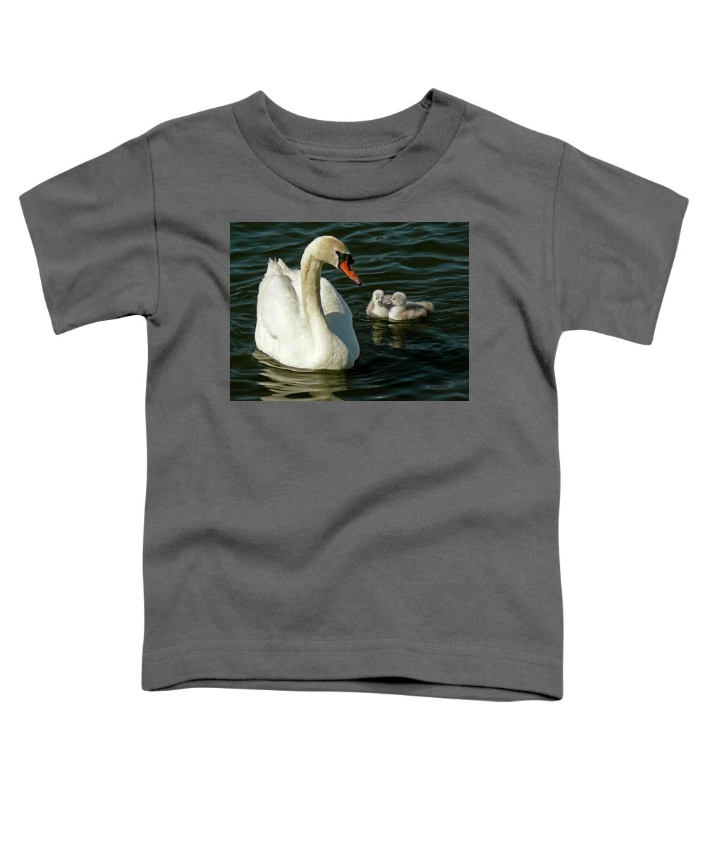 Swan Toddler T-Shirt featuring the photograph Adoring Mother by Inge Riis McDonald