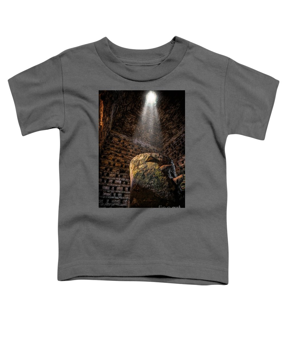 Dovecot Toddler T-Shirt featuring the photograph Ancient Dovecote by Adrian Evans