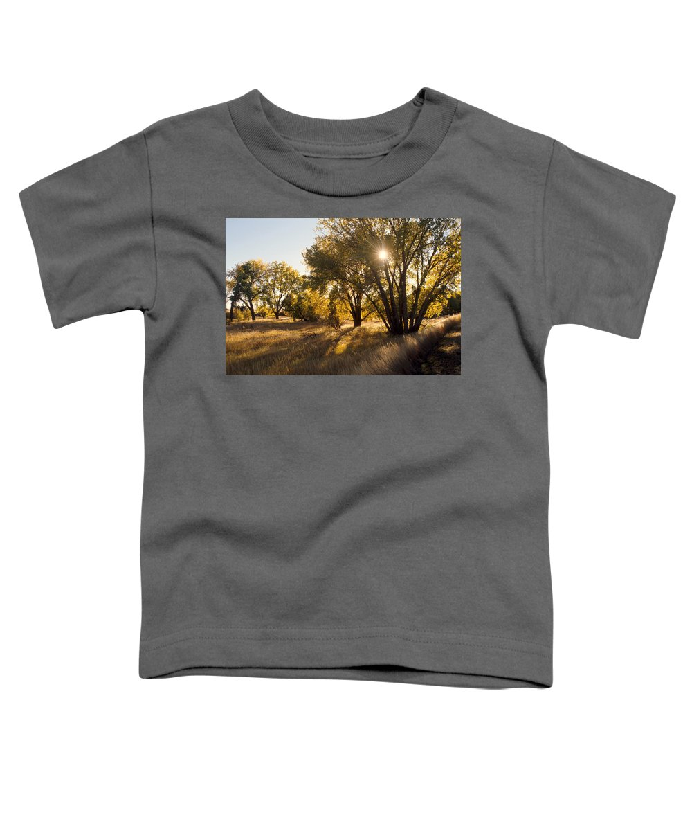 Fall Toddler T-Shirt featuring the photograph Autum Sunburst by Jerry McElroy