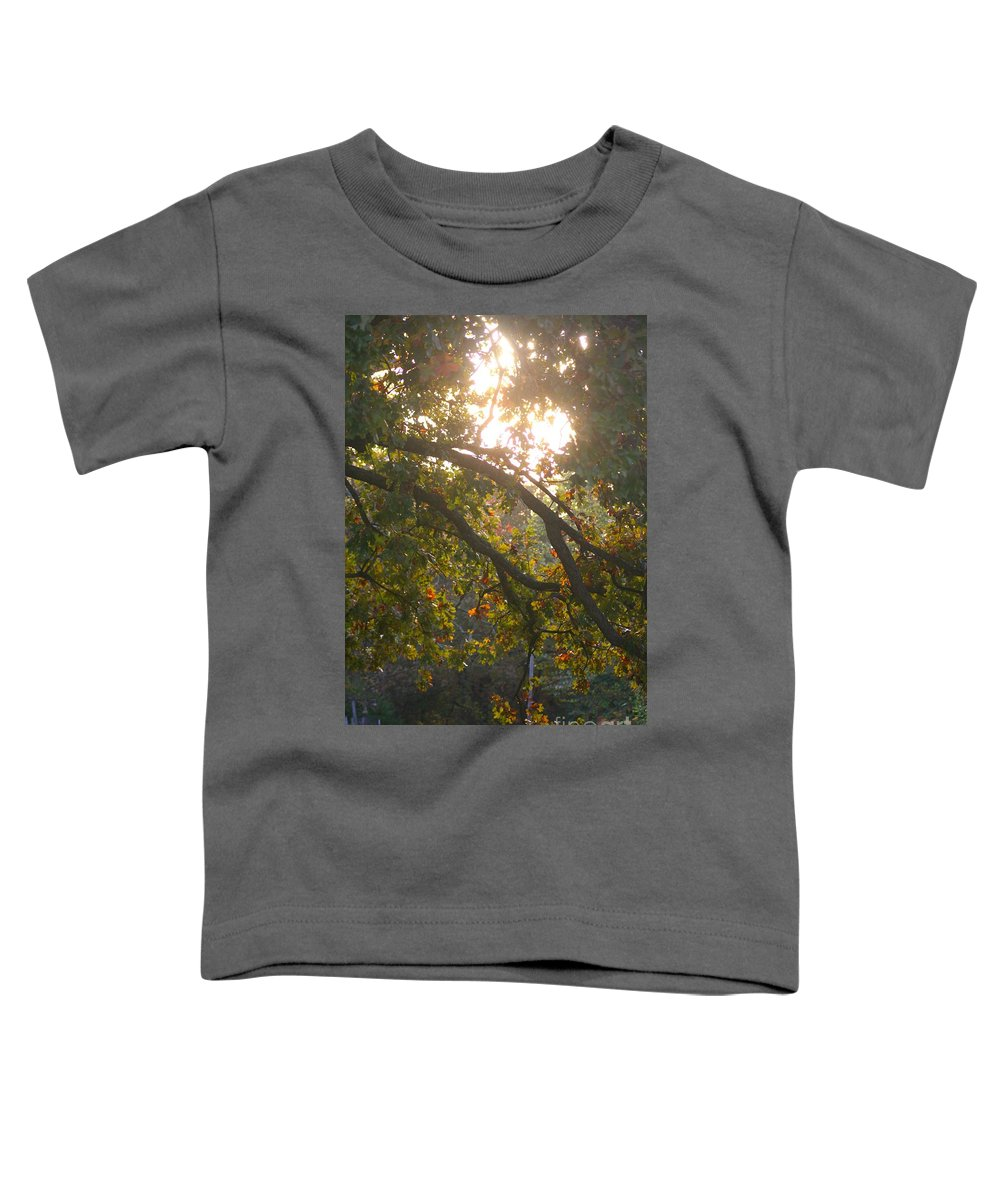 Autumn Toddler T-Shirt featuring the photograph Autumn Morning Glow by Nadine Rippelmeyer