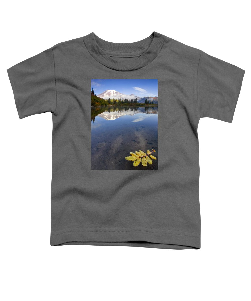 Rainier Toddler T-Shirt featuring the photograph Autumn Suspended by Mike Dawson