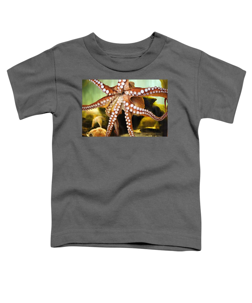 Octopus Toddler T-Shirt featuring the photograph Beautiful Octopus by Marilyn Hunt