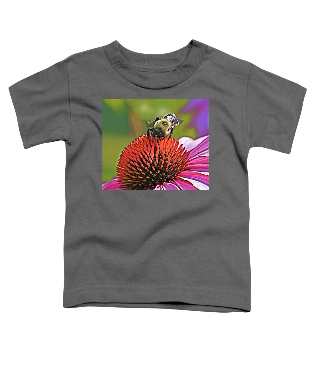 Bee Toddler T-Shirt featuring the photograph Beware by Robert Pearson