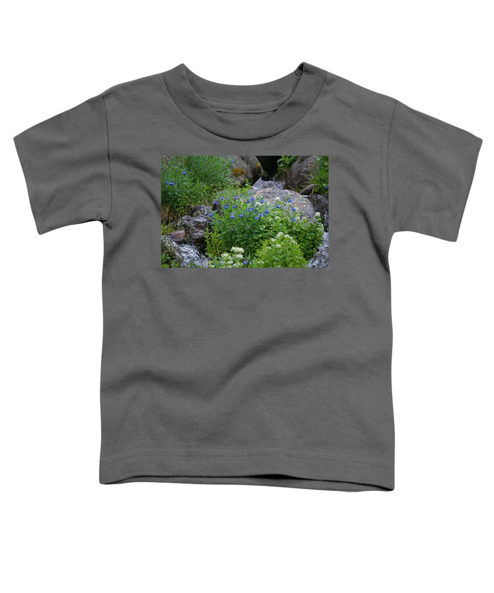 Wildflowers Toddler T-Shirt featuring the photograph Bluebells by Heather Coen