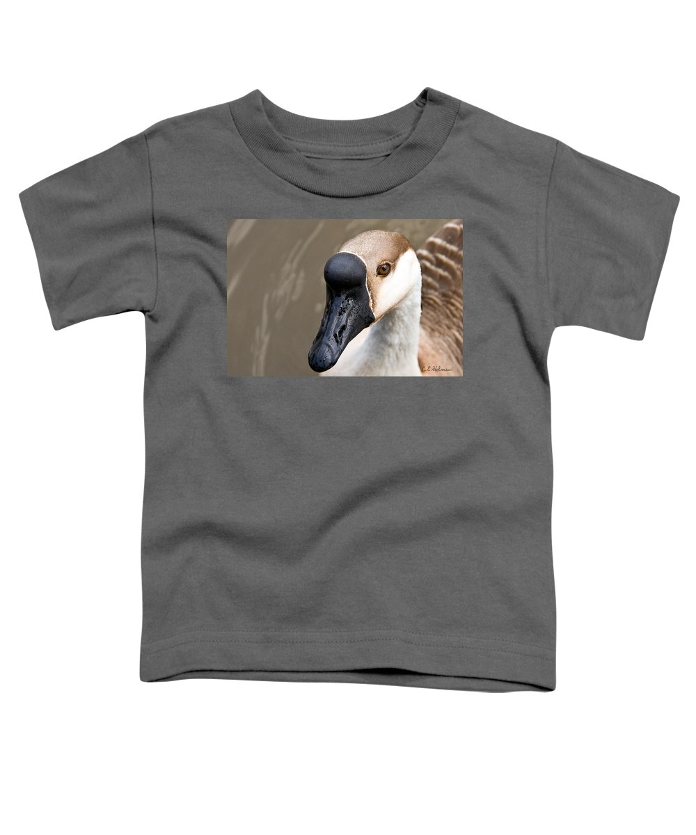 Chinese Brown Goose Toddler T-Shirt featuring the photograph Brown Eye by Christopher Holmes
