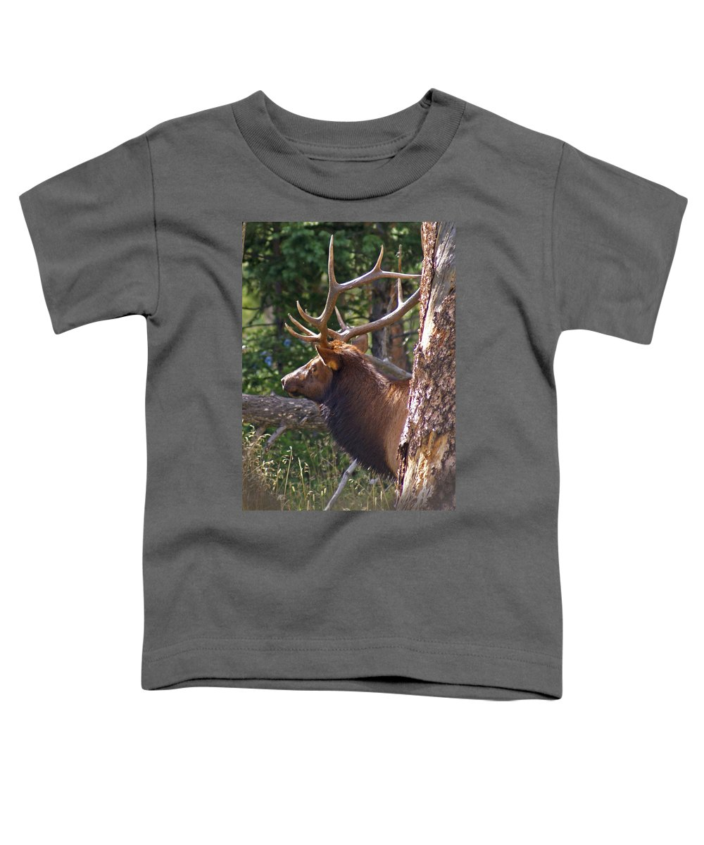 Elk Toddler T-Shirt featuring the photograph Bull Elk 2 by Heather Coen
