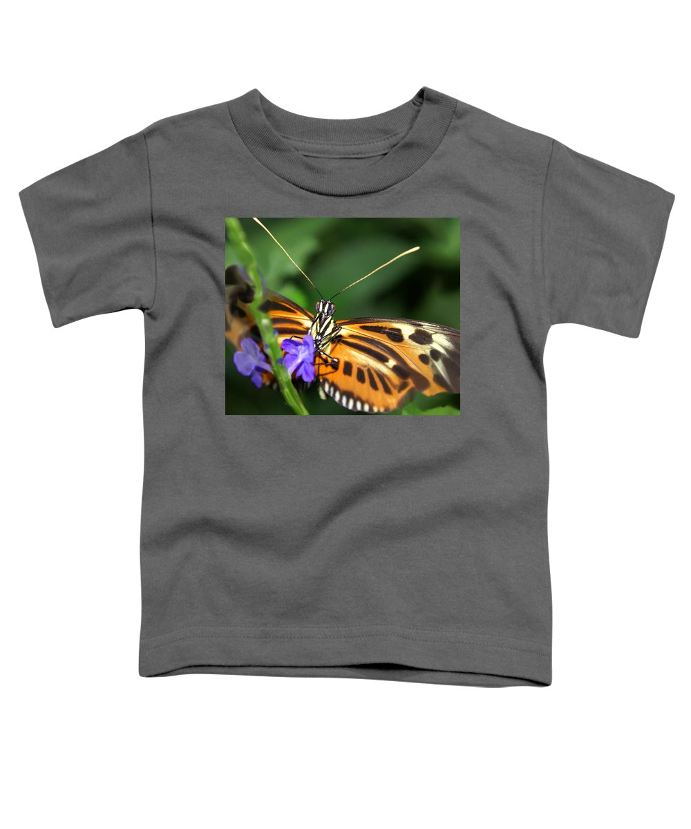 Butterfly Toddler T-Shirt featuring the photograph Butterfly 2 Eucides Isabella by Heather Coen