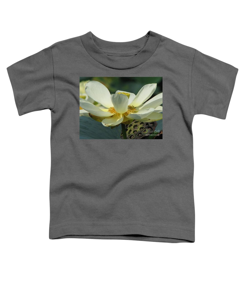 Lotus Toddler T-Shirt featuring the photograph Calm by Amanda Barcon