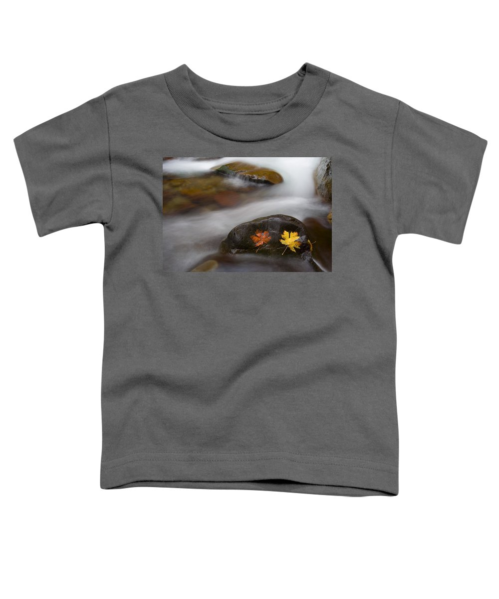 Leaves Toddler T-Shirt featuring the photograph Castaways by Mike Dawson