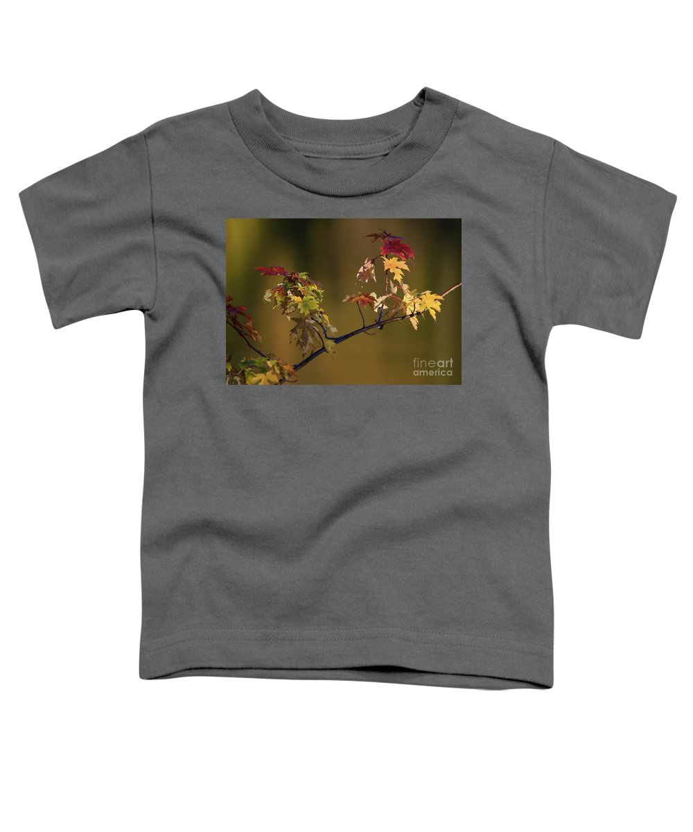 Fall Toddler T-Shirt featuring the photograph Color On A Stick by Robert Pearson