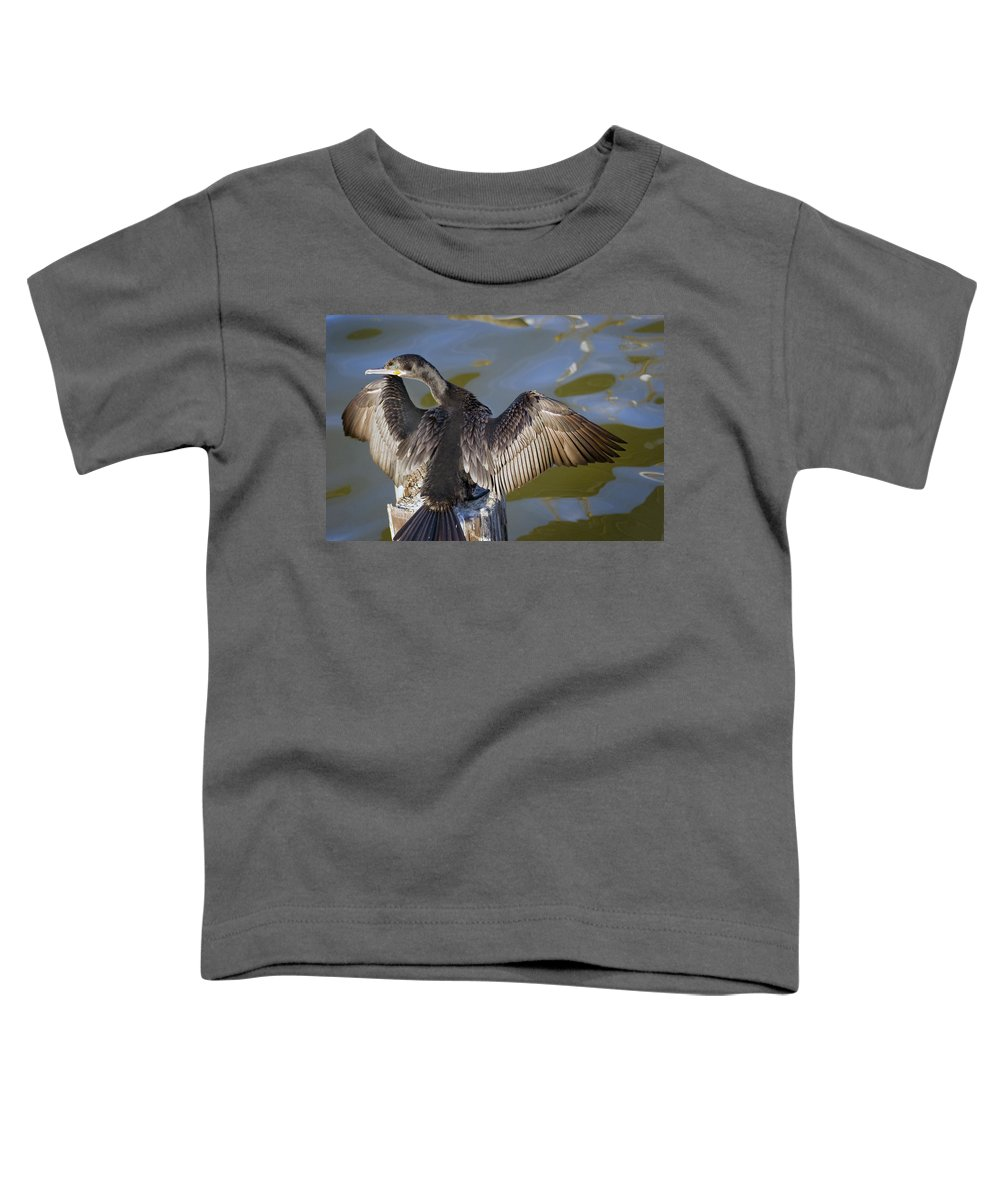 Neotropic Cormorant Toddler T-Shirt featuring the photograph Cormorant looking back by Robert Brown