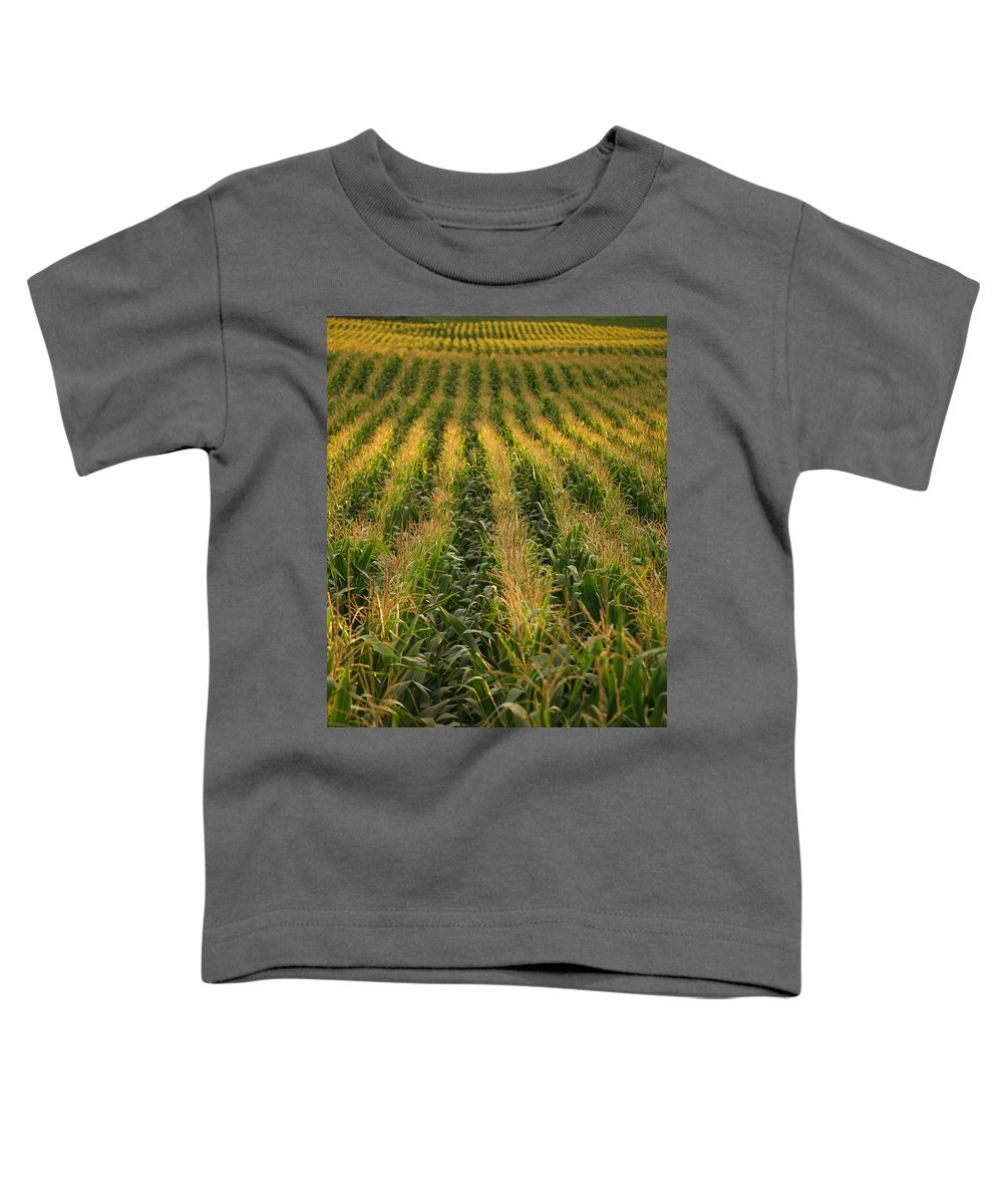 Acores Toddler T-Shirt featuring the photograph Corn Field by Gaspar Avila