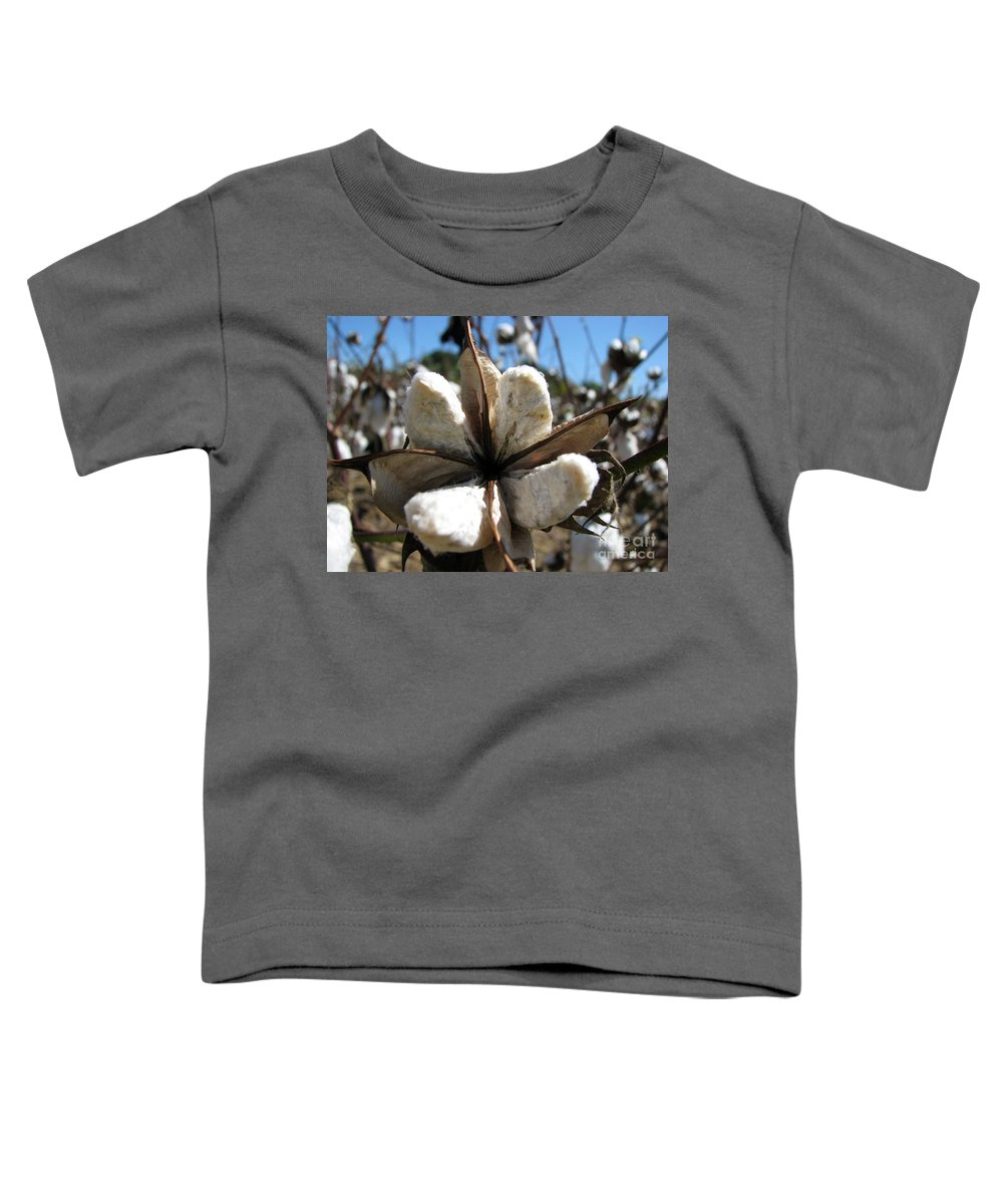 Cotton Toddler T-Shirt featuring the photograph Cotton by Amanda Barcon
