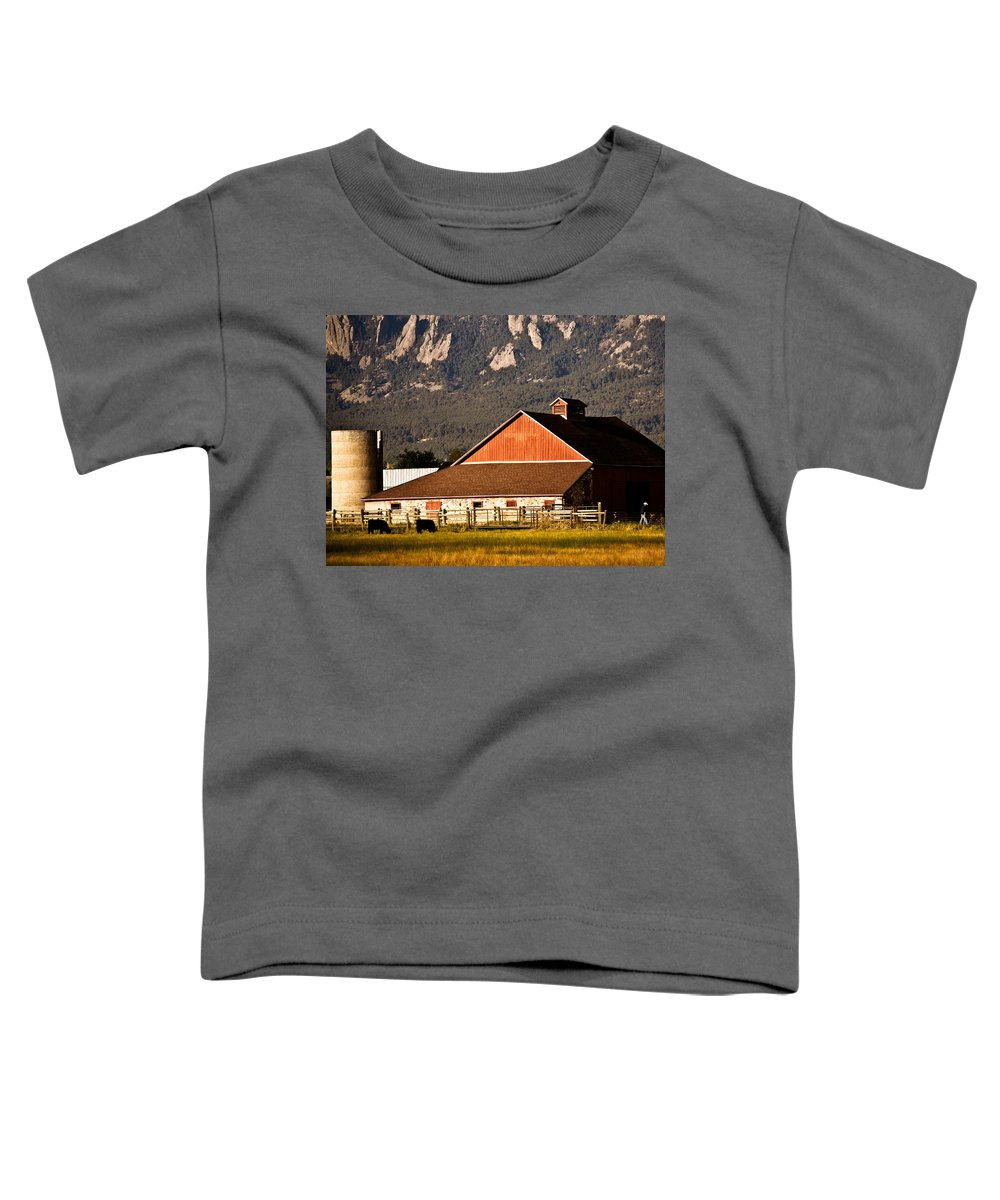Americana Toddler T-Shirt featuring the photograph Country Living Boulder County by Marilyn Hunt
