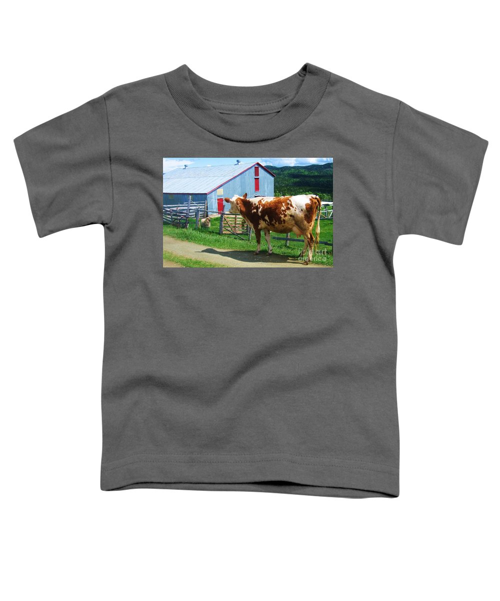 Photograph Cow Sheep Barn Field Newfoundland Toddler T-Shirt featuring the photograph Cow Sheep And Bicycle by Seon-Jeong Kim
