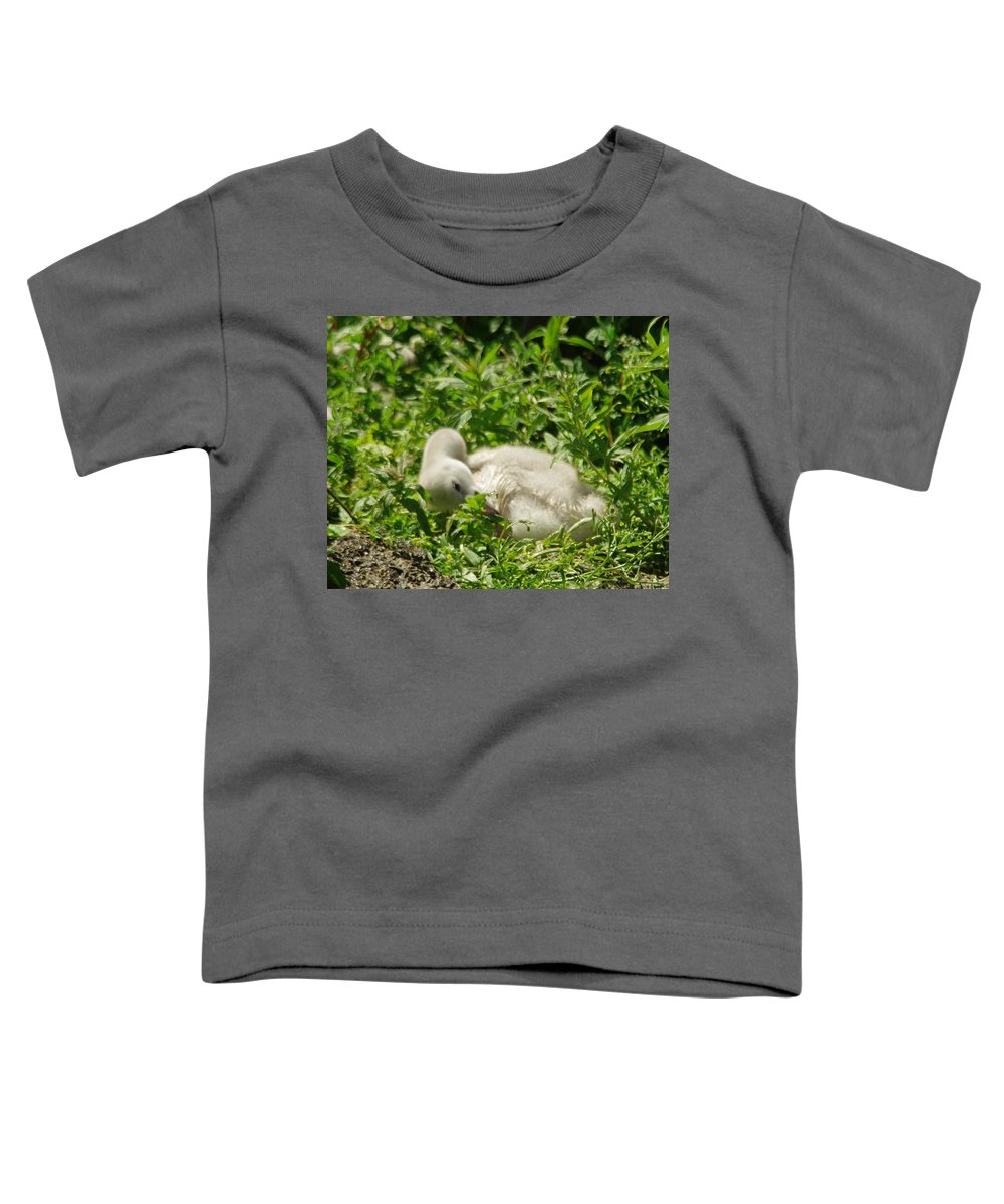 Swan Toddler T-Shirt featuring the photograph Cygnet Getting Ready To Nap by Jeff Swan
