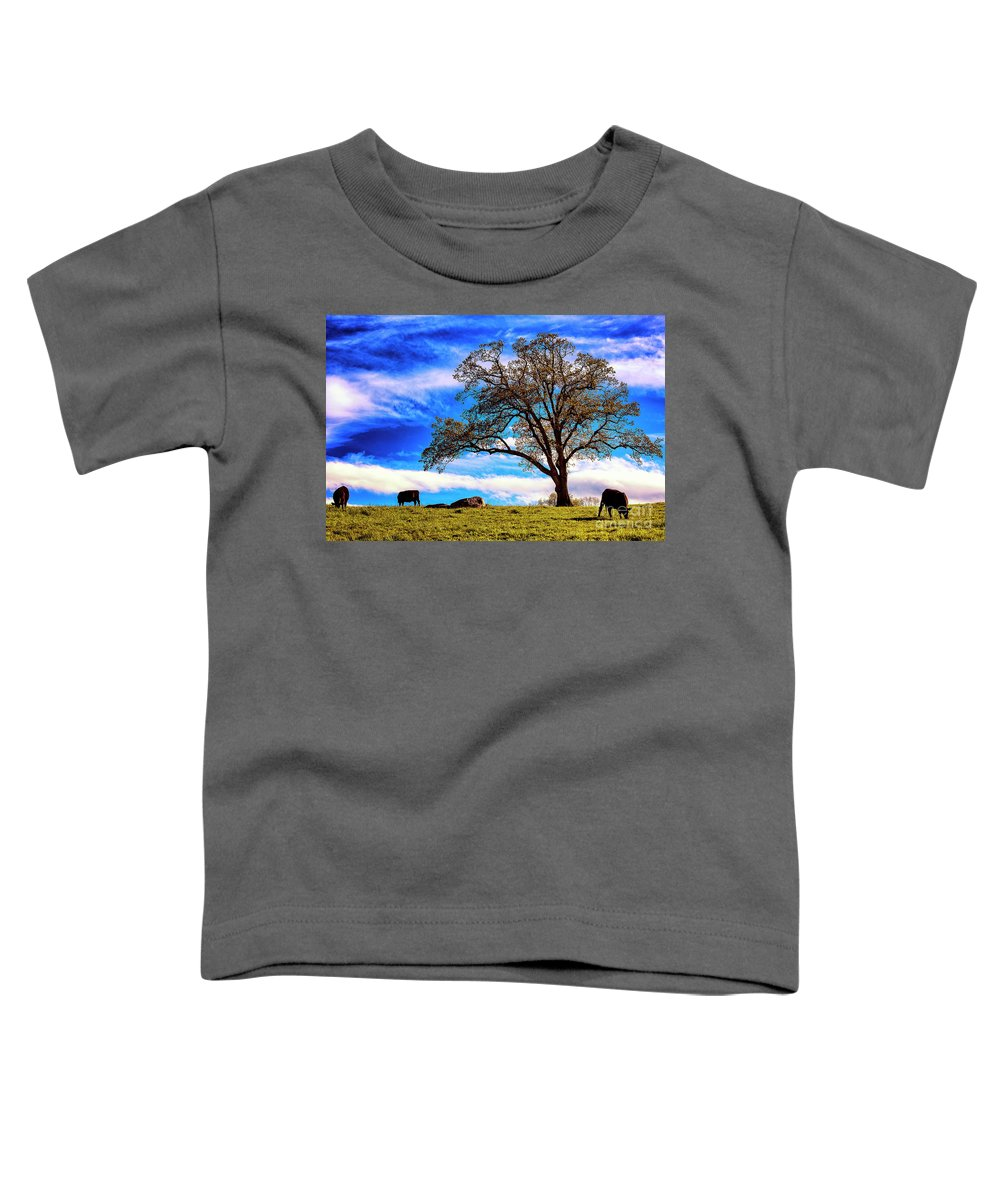 Farm Toddler T-Shirt featuring the photograph De Hoek Farm by Grant Dupill