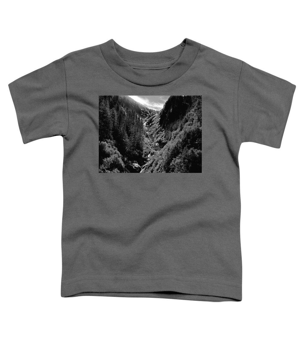 Alaska Toddler T-Shirt featuring the photograph Denali National Park 3 by Dick Goodman