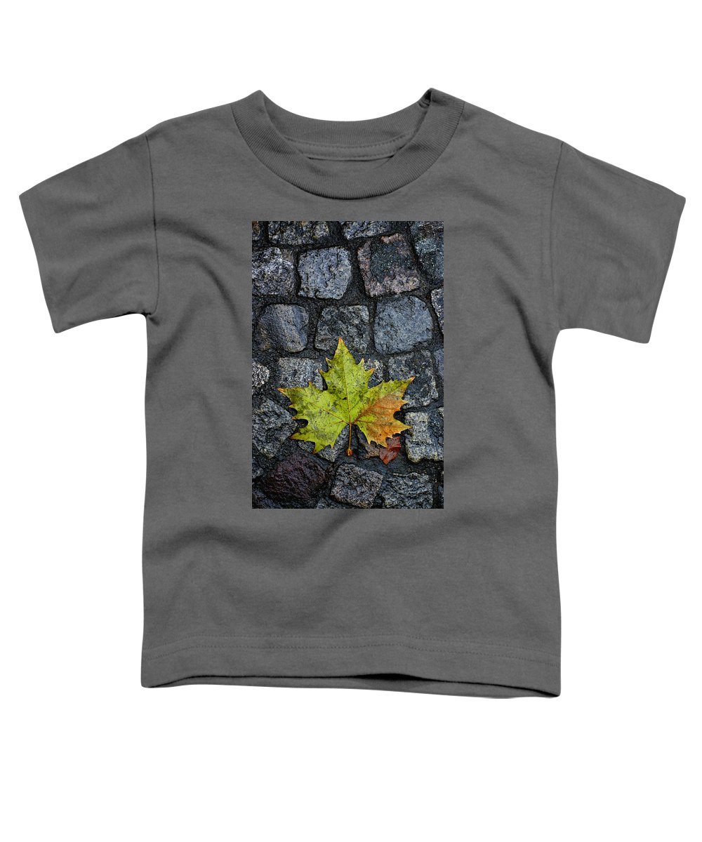 Nature Toddler T-Shirt featuring the photograph Deville by Skip Hunt