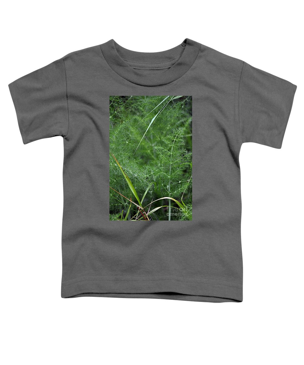 Clay Toddler T-Shirt featuring the photograph Dew On The Ferns by Clayton Bruster